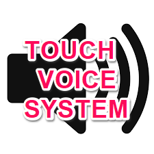 Touch-Voice-System